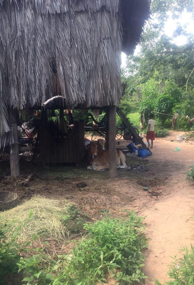 第1回カンボジアスタディツアー 2日目①<br>貧困層の村を訪問(住居)